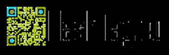 Vign_flashtag_logo_233x70